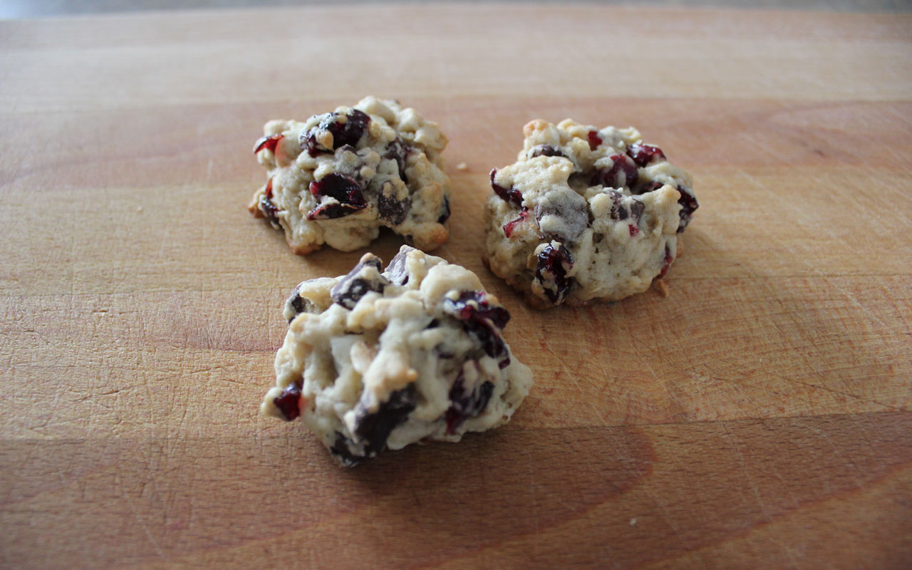 Oatmeal Cranberry Double Chocolate Cookies