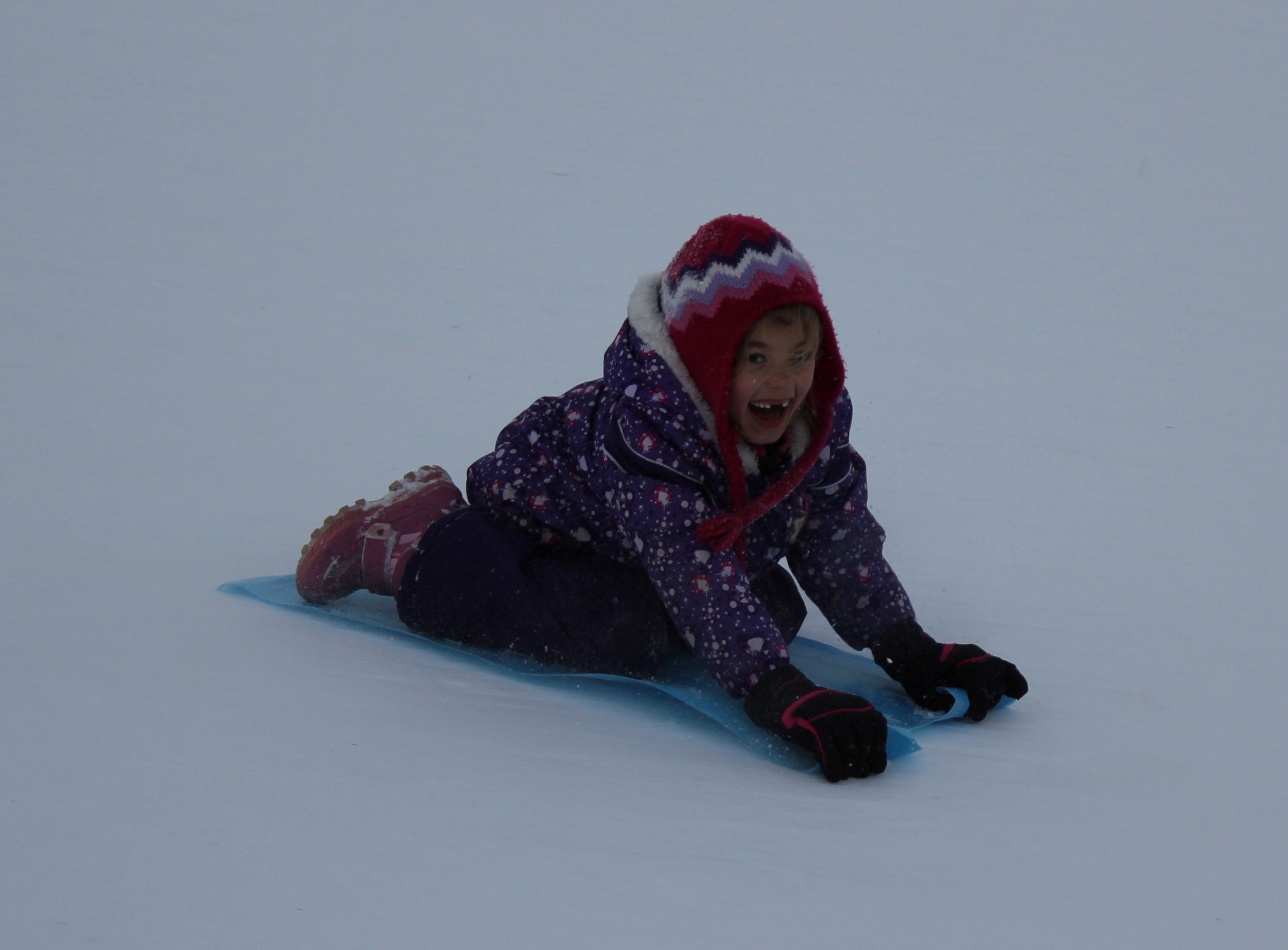 Sledding in Canmore