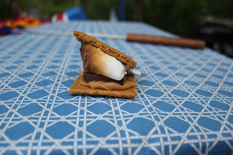 Adventures with S'mores & Camping at Ol' MacDonalds Resort