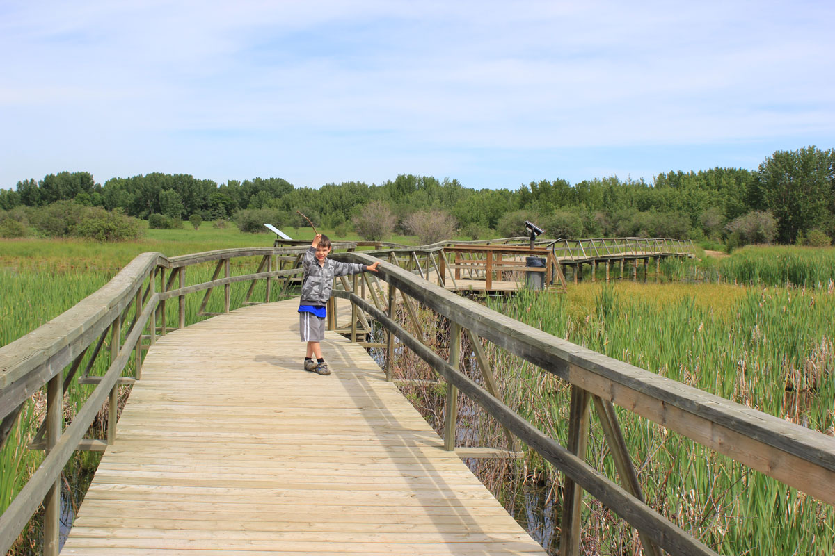 The boardwalk over the marsh at Gull Lake