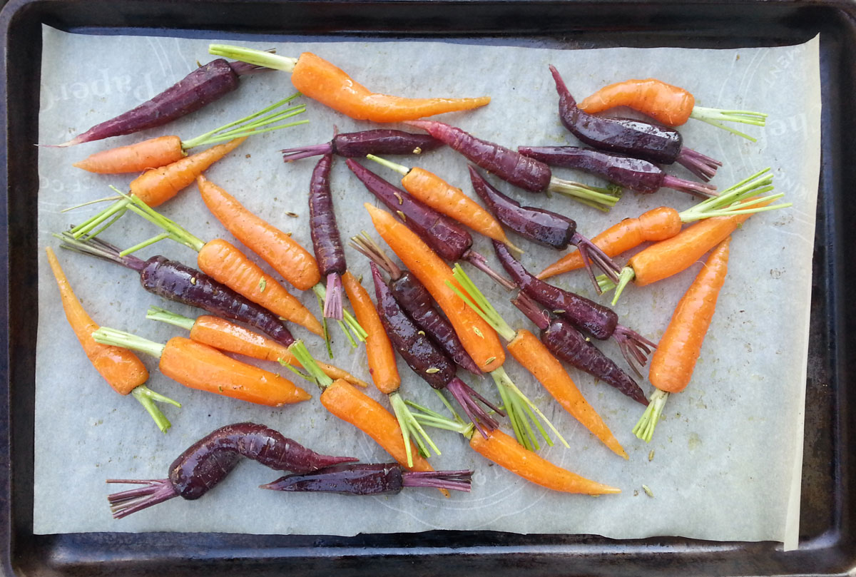 Garden carrots ready for roasting
