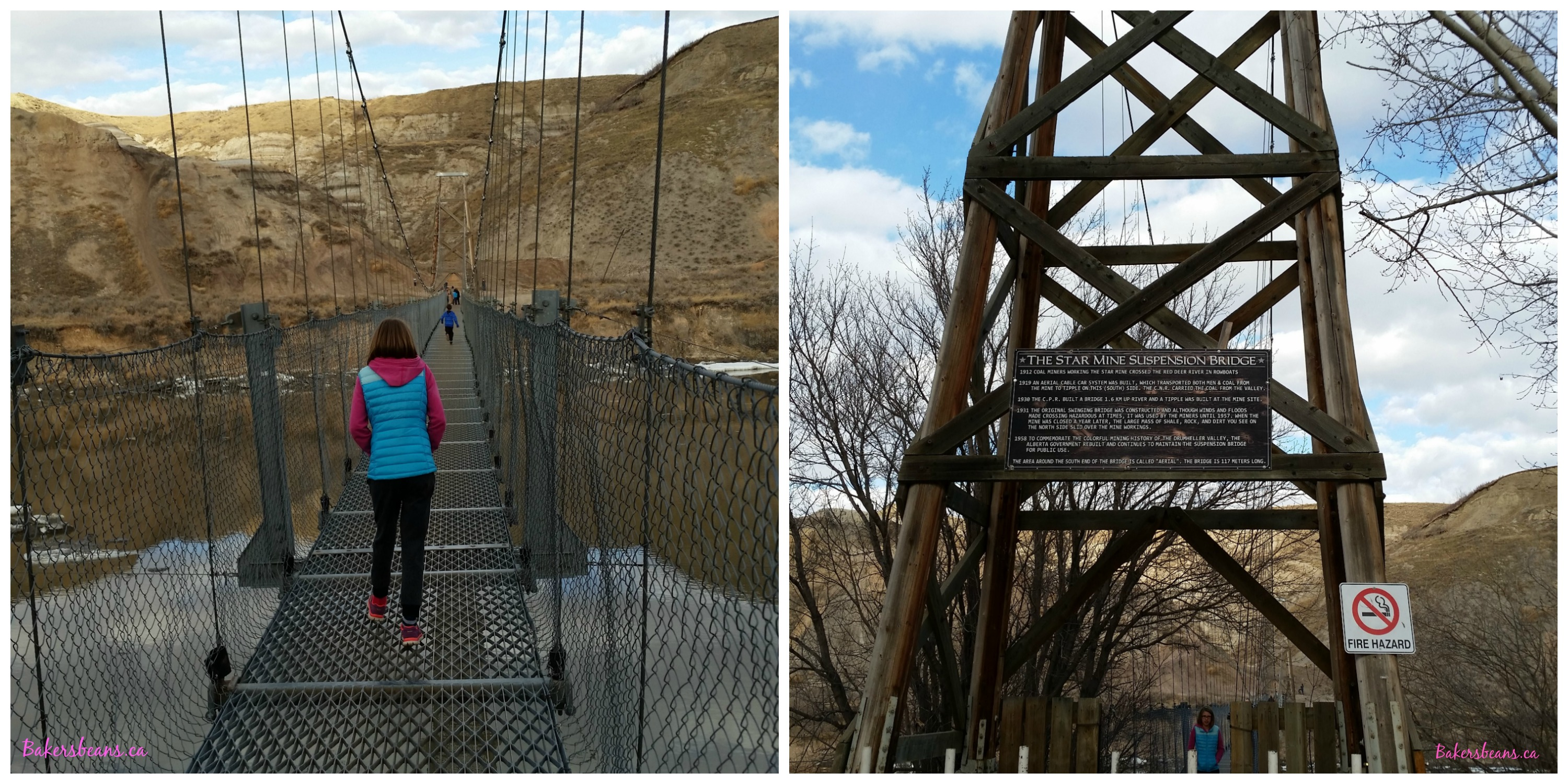 Star Mine Suspension Bridge
