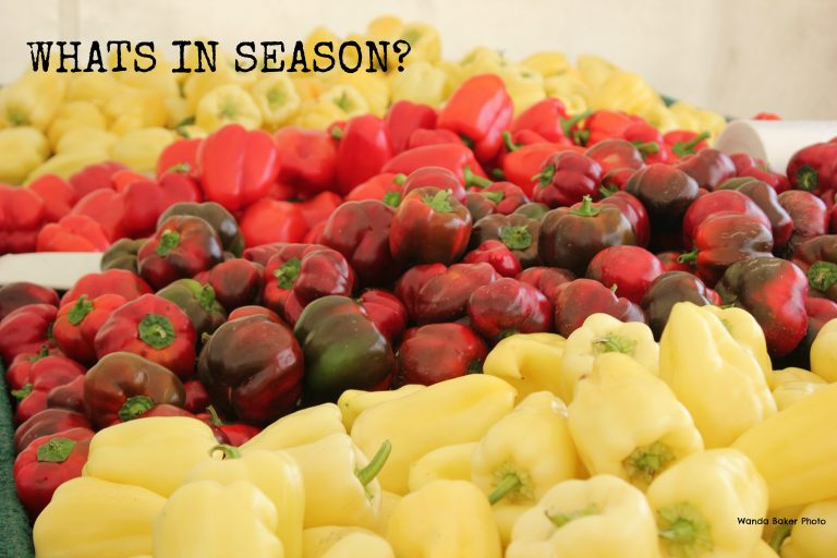 What's in Season – February
