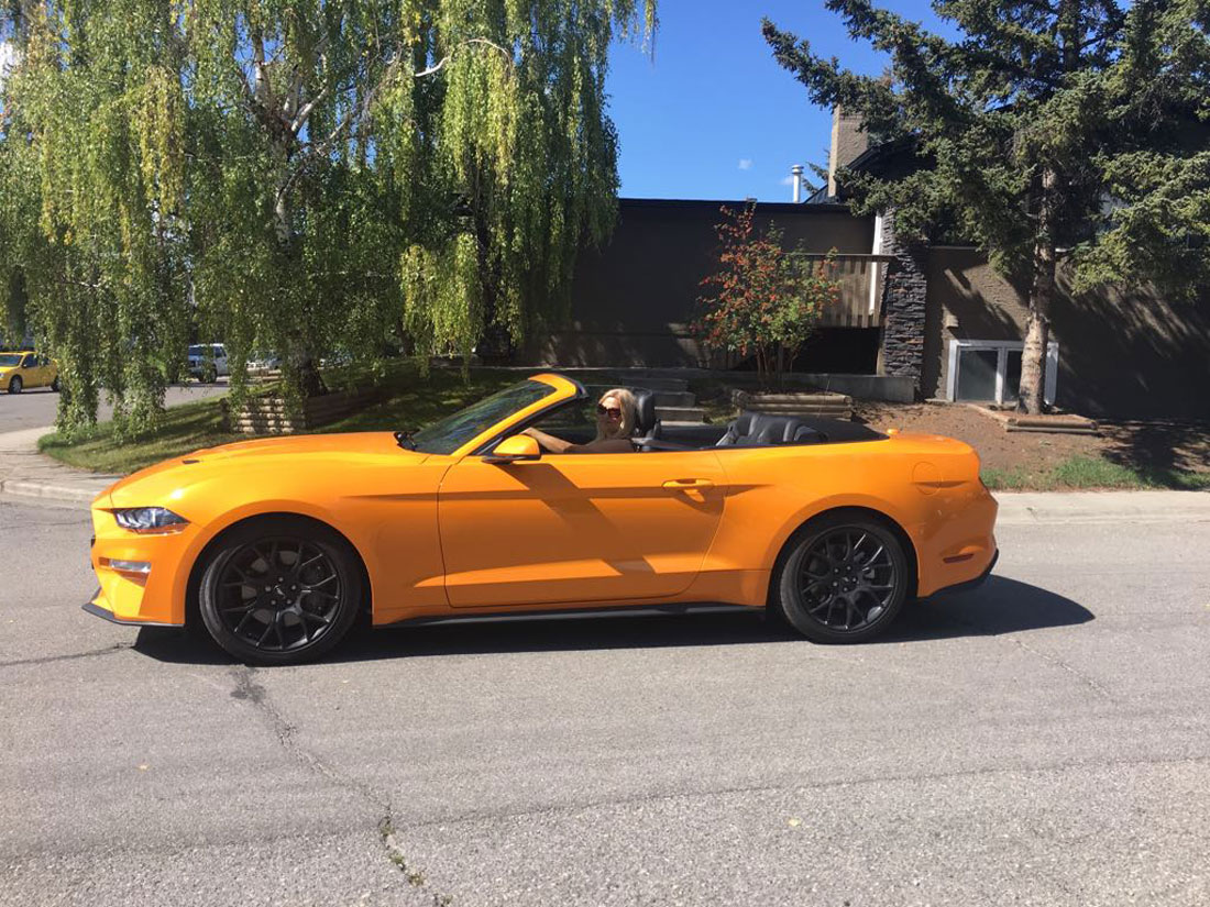 Cruising through the neighbourhood in the Ford Mustang