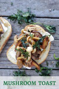 Mushroom Toast with brie
